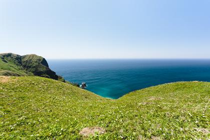 日本・5月の北海道礼文島