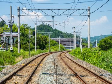 線路と青信号 東北本線