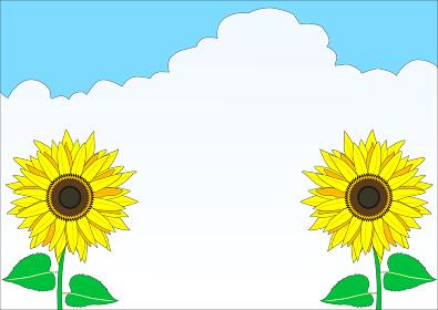2つの可愛いひまわりときれいな雲