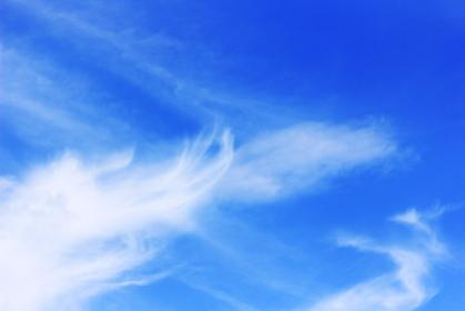 青空と流れる雲