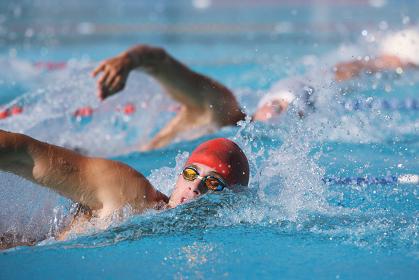 男子競泳 自由形