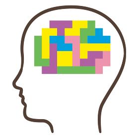 脳 ブロック