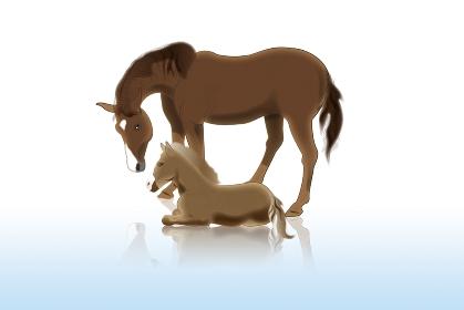 馬の親子 イラスト