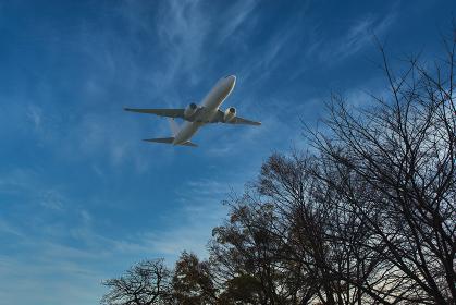 快晴の空を飛んでいく飛行機を見上げる