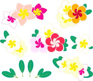 プルメリアの花と葉のイラストアイコンセット