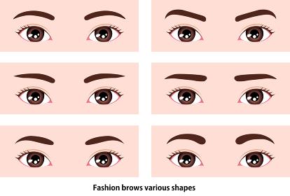 若い女性の眉毛の形イラスト (メイク・化粧) / 東洋人・日本人