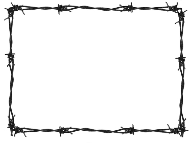barb frame