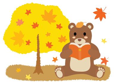 読書の秋に本を読む熊さん
