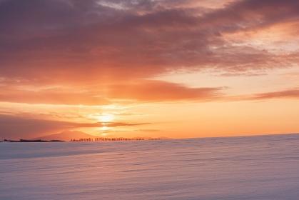 北海道・大空町 冬のオーヴェルの丘の朝焼け