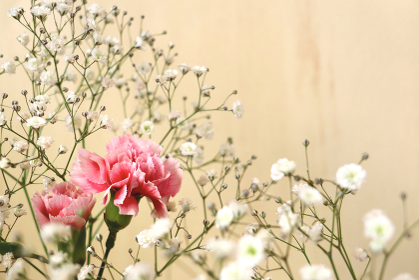 壁の前のカーネーションとカスミソウの花束 2