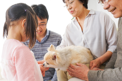 犬の世話をする3世代家族