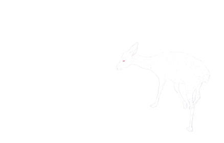 写実的な動物イラスト、虹色の雌鹿の姿