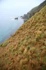 Japan;Hokkaido;Tumpat;Teuri Island