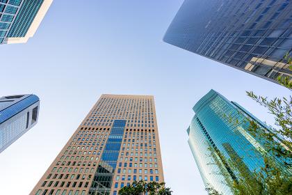 爽やかな緑のビジネス街のイメージ