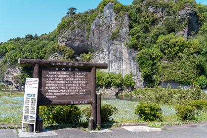 青の洞門(春 ネモフィラ畑)