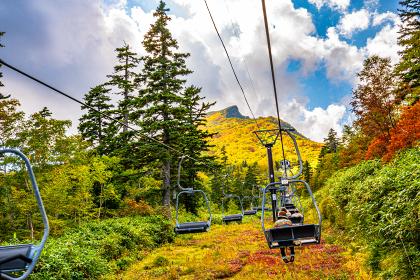 ロープウェイと紅葉する山