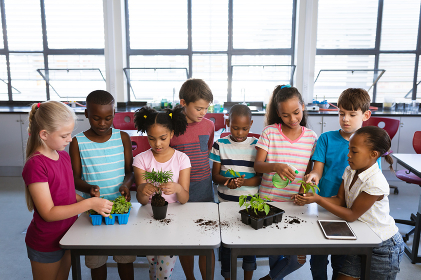 Group of diverse students transplanting and watering plant seedlings together at school. school and education concept