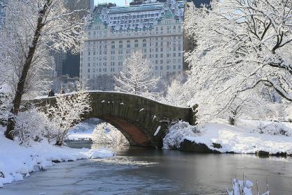 セントラルパーク 雪の風景 in Manhattan ニューヨーク