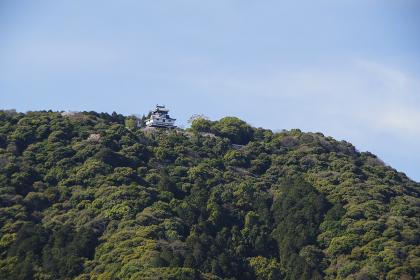 山頂に再建された岩国城