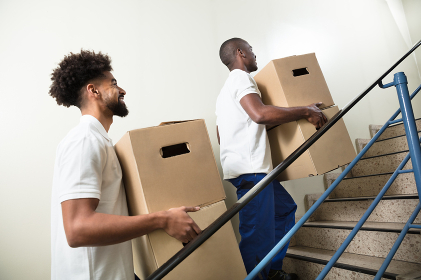 Two Young Male Worker Holding Cardboard Boxes