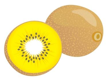 丸ごとと半分にカットされた黄色いキウイ