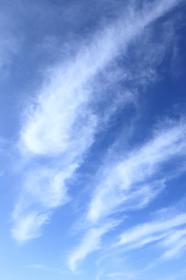 青空 20 秋の空 縦位置