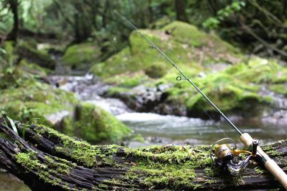 渓流ルアー釣りと清流の緑のイメージ