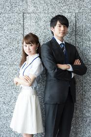ビジネスイメージ・稲田石(高級壁材)の背景