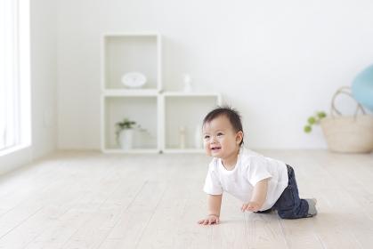 フローリングの床でハイハイをする赤ちゃん