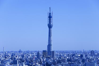 建設中の東京スカイツリーと東京の街並み