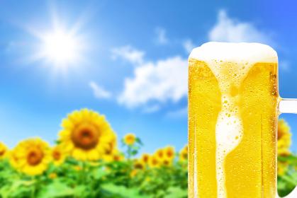 ひまわりの背景と泡が垂れた水滴のついたジョッキビールの画像