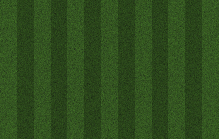 芝生のスポーツ運動場 グラウンド、サッカー場、ラグビー、スタジアム
