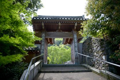新緑の善峯寺 東門 京都市西京区