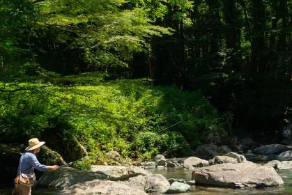 テンカラ 渓流釣り