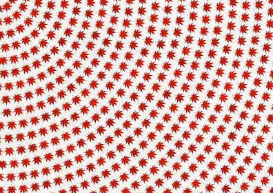 連続した紅葉のパターン 背景画像 白赤サークル