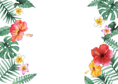 南国 植物 背景 フレーム 水彩 イラスト