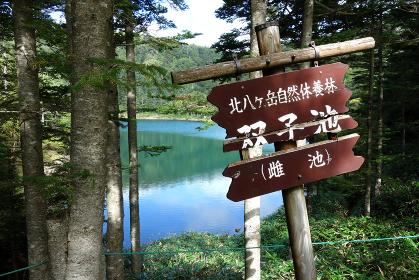 北八ヶ岳・双子池(雌池)