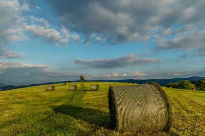 An agricultural machine riding on below a hill with an abandoned tree , Czechia, Zlin Region, Valasske Mezirici