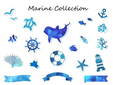 海の生き物 水彩コレクション