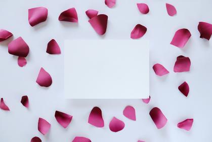 ピンクの花びらに囲まれたカード 5