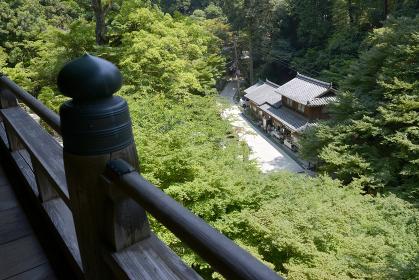 書写山円教寺 摩尼殿から参道を望む 兵庫県姫路市