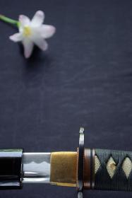 抜きかけの日本刀と清楚な花一輪