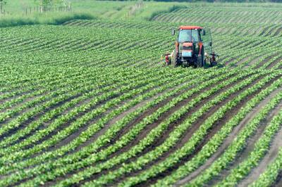 農林水産業