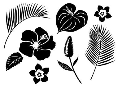 南国植物の花や葉 アイコンセット