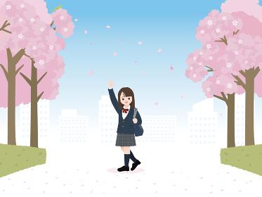 学生 中高生 桜 桜並木 通学 風景 イラスト素材