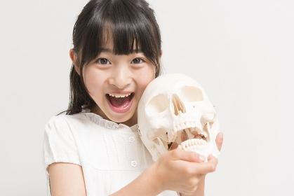 骸骨の模型と女の子