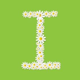 Flora Daisy Design Alphabet Vector Illustartion EPS10. Flora Daisy Design Alphabet Vector Illustartion