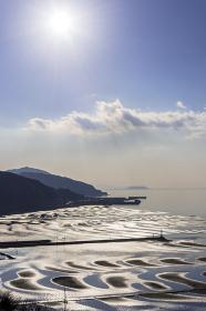 おこしき海岸の逆光の干潟