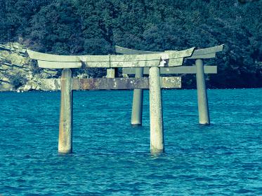 対馬 海へと続く和多都美神社の鳥居 10月