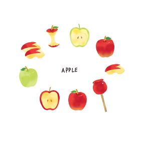 カジュアルなタッチ 水彩タッチのりんごのイラストセット